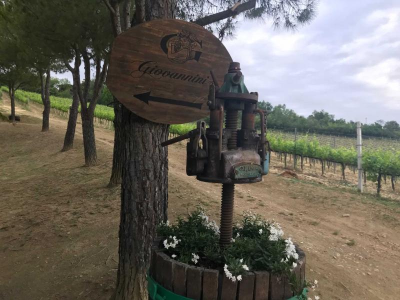 insegna vini giovannini imola